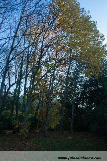 Outono Rianxo 065