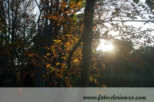 Outono Rianxo 071